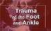 Trauma of the Foot and Ankle e-Book